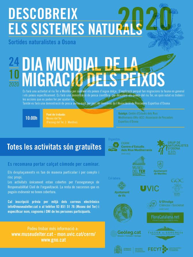 Dia Mundial de la migració dels peixos